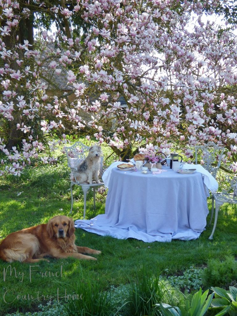 breakfast table set in front of magnolia