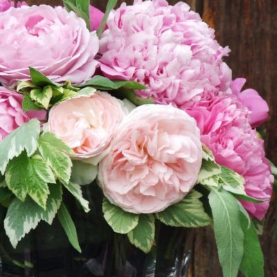 my french country flowers - peonies and roses