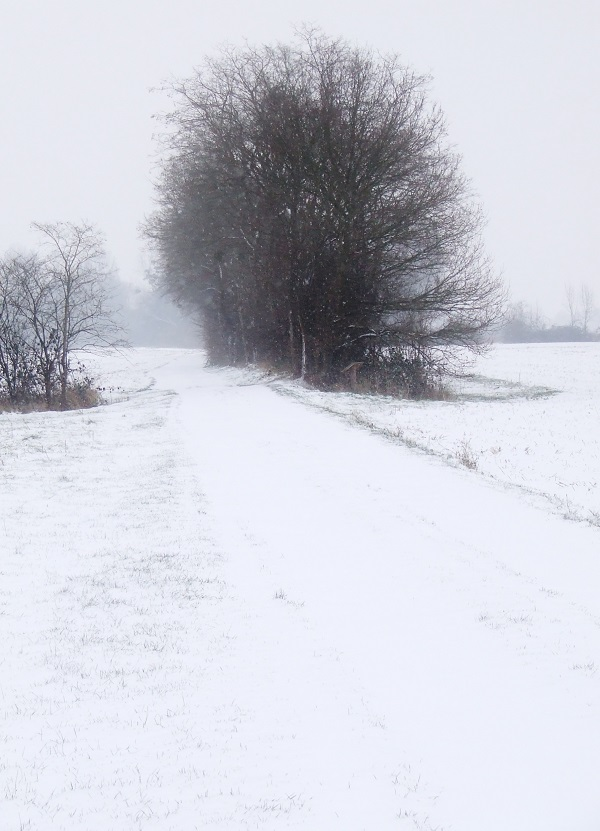 Snow On Winter Path My French Country Home